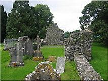 N9788 : The Jumping Church, Kildemock, Ardee by Kieran Campbell