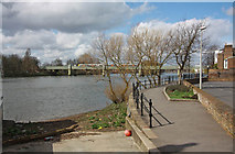 TQ1977 : The Thames from Grove Park Road by John Salmon