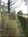 SJ6074 : Footpath at rear of cottages in Acton Bridge by Dr Duncan Pepper