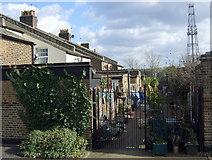TQ2182 : Crewe Place, Old Oak Lane by ceridwen