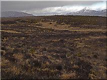 NN5860 : Moorland north of Loch Rannoch by Dr Richard Murray