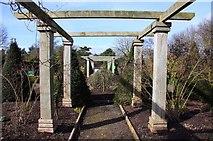 SJ7243 : Pergola at Bridgemere Garden World by Steve Daniels