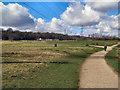 SD7704 : Clifton Country Park by David Dixon