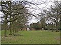 SP2270 : Avenue of oak, Wroxall Abbey park by Robin Stott
