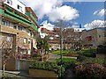 NZ2764 : Gardens behind the Byker Wall by Andrew Curtis