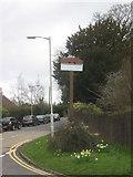 TR1854 : Bridge Village Sign by David Anstiss