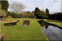 SJ6651 : Ponds in Stapeley Water Gardens by Steve Daniels