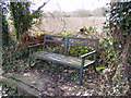 TM3877 : Canalside Bench by Adrian Cable