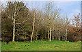 J3370 : The Lagan Meadows walk, Belfast (20) by Albert Bridge
