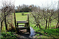 J3370 : The Lagan Meadows walk, Belfast (23) by Albert Bridge