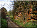 SJ7500 : Sandstone outcrop at Higford by Richard Law
