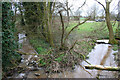 SJ6456 : Bend in stream, north of Poole Old Hall by Espresso Addict