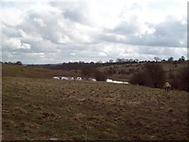 SK2558 : Mere to the West of Horse Dale by Jonathan Clitheroe