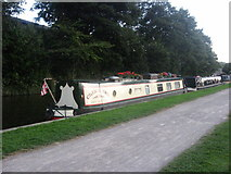 ST7565 : Cherus Two by the Towpath by David Roberts