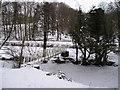 SO0094 : Foot bridge over Afon Carno by Chris Andrews