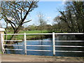 TG1208 : The River Yare below Marlingford Mill by Evelyn Simak