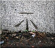 J3573 : Bench Mark, Belfast by Rossographer