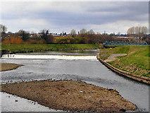 SD8100 : River Irwell by David Dixon