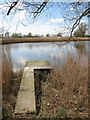TM3899 : Fishing spot on the eastern edge of Hardley Flood by Evelyn Simak