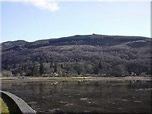 NN2904 : The head of Loch Long by Gordon Brown