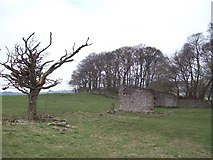 SK2076 : Abandoned Outbuilding near Eyam View Farm by Jonathan Clitheroe