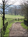 NY9964 : Spoutwell Lane (7) by Mike Quinn
