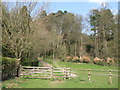 NY9964 : Haugh and woodland around Spoutwell Lane by Mike Quinn