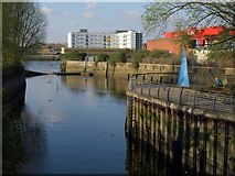 TQ2575 : Mouth of the Wandle by Derek Harper