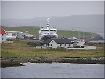 HU5462 : Saltness, Whalsay by Robbie