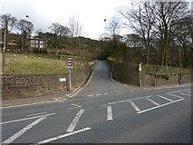 SE0424 : John Naylor Lane by Alexander P Kapp