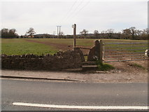 ST6990 : Heath End, stile by Mike Faherty