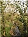 TQ6834 : River Bewl by David Anstiss