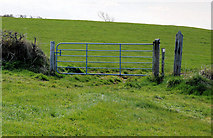 J5283 : Gate near Groomsport by Albert Bridge