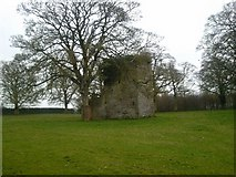 N9439 : Tower House in ruins, Moygaddy, Co Meath. by C O'Flanagan