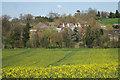 TQ7136 : Oast House at Risebridge Health And Sports Club, Ranters Lane, Goudhurst, Kent by Oast House Archive