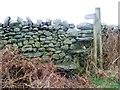 SD2783 : Step stile near Gawthwaite by Maigheach-gheal