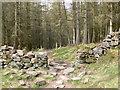 SH7560 : Wall and footpath, Mynydd Deulyn by Eirian Evans