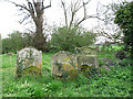 TF5716 : The ruined church of St Mary in Tilney cum Islington - churchyard by Evelyn Simak