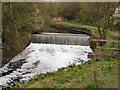 SD8505 : Weir on River Irk, Alkrington Woods Nature Reserve by David Dixon