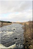 NN2939 : River Orchy by edward mcmaihin