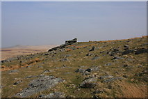 SX5680 : Lynch Tor by Guy Wareham
