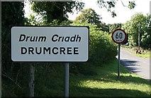 N5566 : Drumcree, County Westmeath by Sarah777