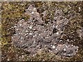 NS3482 : Pudding stone outcrop by Lairich Rig