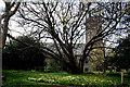 SW6527 : Helston: St. Michael's Parish Church by Dr Neil Clifton