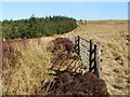 NS3482 : Field gate near Ben Bowie by Lairich Rig