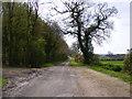 TM3367 : Bruisyard Road, Bruisyard by Geographer