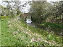 TQ0524 : Floodgates open at Lording's Bridge on the Arun Canal by Dave Spicer