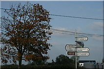 S2654 : Ballysloe, County Tipperary (2) by Sarah777