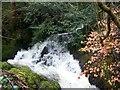 SD3891 : Waterfall, Burrow Beck by Maigheach-gheal