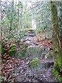 SD3891 : Footpath to Park Cliff Farm by Maigheach-gheal